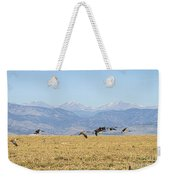 Flying Canadian Geese Rocky Mountains 2 Weekender Tote Bag