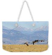 Flying Canadian Geese Rocky Mountains Panorama 2 Weekender Tote Bag