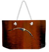 Flying Gull On Fall Color Weekender Tote Bag