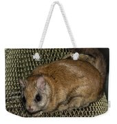 Flying Squirrel On The Feeder Weekender Tote Bag