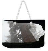 Foggy Morning Sequoias Weekender Tote Bag