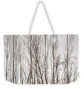 Foggy Winter Tree Fence 13271 Weekender Tote Bag