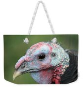 Fontana Turkey Portrait Weekender Tote Bag
