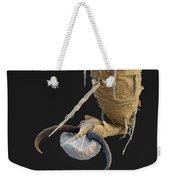 Foot Of A Bat Tick Sem Weekender Tote Bag