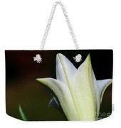 For The Love Of Lilies 9 Weekender Tote Bag
