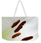 For The Love Of Lilies 7 Weekender Tote Bag