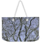 For The Love Of Trees - 2  Weekender Tote Bag