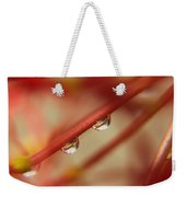 For Your Eyes Only Weekender Tote Bag