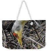 foraging for wild edibles Sandhill Crane Weekender Tote Bag