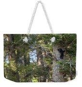 Forest Black Bear Cub Weekender Tote Bag