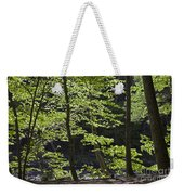 Forest Cathedral Weekender Tote Bag