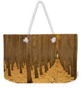 Forest Cathedral - One Weekender Tote Bag