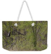 Forest Glimpse Weekender Tote Bag