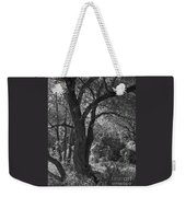 Forest Light Weekender Tote Bag