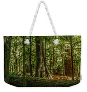 Forest Of Cathedral Grove Collection 1 Weekender Tote Bag