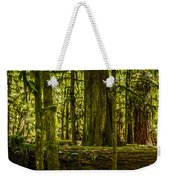 Forest Of Cathedral Grove Collection 3 Weekender Tote Bag