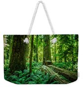 Forest Of Cathedral Grove Collection 8 Weekender Tote Bag