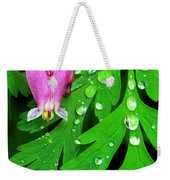 Formosa Bleeding Heart On Ferns Weekender Tote Bag