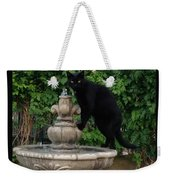 Fountain Cat Weekender Tote Bag