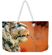 Fountain Lion Weekender Tote Bag