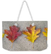 Four Autumn Leaves Weekender Tote Bag