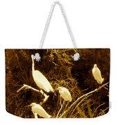 Four Resting Egrets Weekender Tote Bag