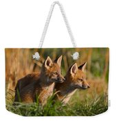 Fox Cubs At Sunrise Weekender Tote Bag