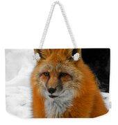 Fox Gaze Weekender Tote Bag