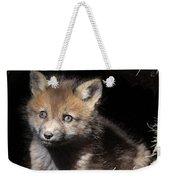 Fox Kit In Den Weekender Tote Bag