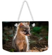 Fox Kit Weekender Tote Bag