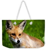 Fox Pup Weekender Tote Bag by Fabrizio Troiani