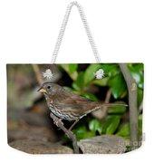 Fox Sparrow Weekender Tote Bag