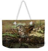Fox Sparrow Drinking Weekender Tote Bag