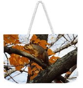 Fox Squirrel In Autumn Weekender Tote Bag