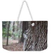 Fox Squirrel Vertical Weekender Tote Bag