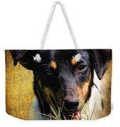 Fox Terrier Dog Weekender Tote Bag