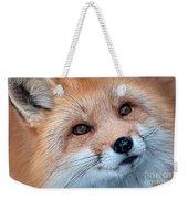 Foxy Lady Weekender Tote Bag by Bianca Nadeau