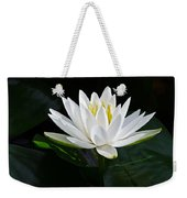 Fragrant Water-lily Weekender Tote Bag