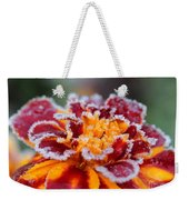 French Marigold Named Durango Red Outlined With Frost Weekender Tote Bag