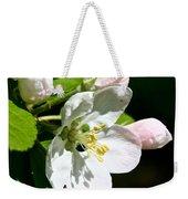 Fresh Fruit Blossoms Weekender Tote Bag