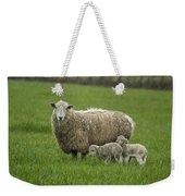 Freshly Made - Winter Lambs Weekender Tote Bag