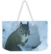 Friendly Squirrel Weekender Tote Bag
