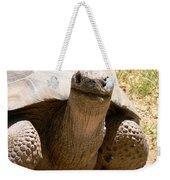 Friendly Tortoise Weekender Tote Bag
