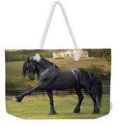 Friesian Stallion Tije Spanish Walk Weekender Tote Bag