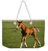 Frisky Colt Weekender Tote Bag