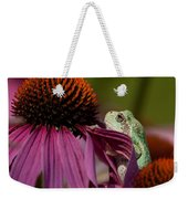 Frog And His Cone Weekender Tote Bag