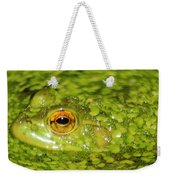 Frog In Single Celled Algae Weekender Tote Bag