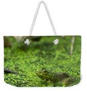 Frog In Swamp 2 Of 3 Weekender Tote Bag