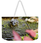 Frog On Log 1 Of 3 Weekender Tote Bag