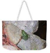 Frog On Rocks Weekender Tote Bag